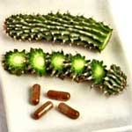 Hoodia Weight Loss Gum